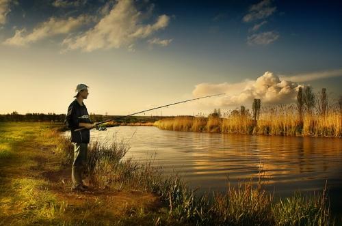 настоящему рыбаку нужно многое река цветы