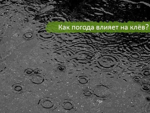 как зависит жор держи погоды
