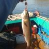 Рыболовные трофеи