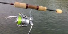 Новые правила рыболовства. Комментарий ученых КаспНИРХа