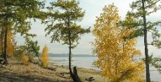 Россия - страна грибников и рыбаков