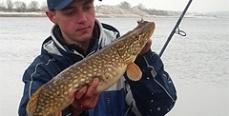 Украина: Запрет на лов рыбы на Луганщине снят