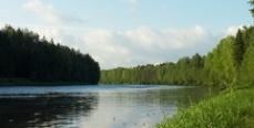 У прибайкальских браконьеров изъяли 4 тонны рыбы