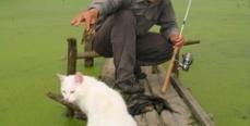 Рыбакам на заметку: Советы ихтиолога
