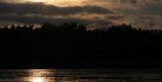 В Липецкой области »обчистили» пруд