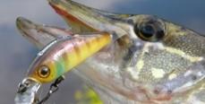 Особенности финской национальной рыбалки