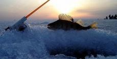 Подледная рыбалка. Особенности национального подледного лова.