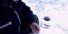 Ужение плотвы зимой в Подмосковье