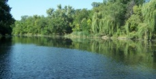 Рыбалка на реке Мокрая Московка
