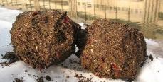 Зимняя прикормка для леща и плотвы